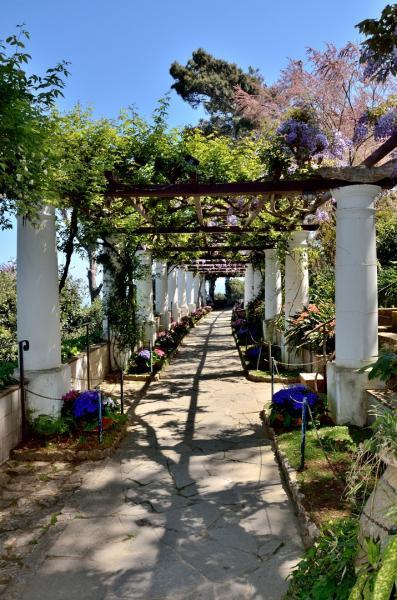 131 - Anacapri - A la Villa San Michele
